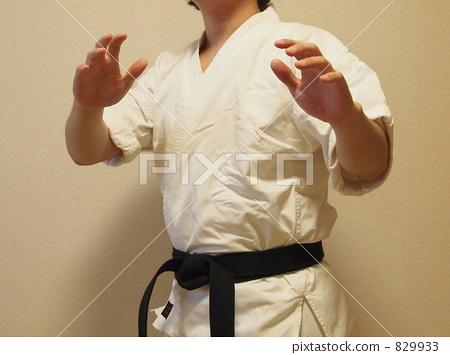 karate, empty hand, shorinji kempo 829933