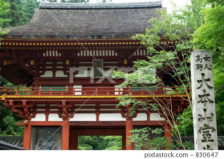 Nabe gate of Muroji Temple 830647