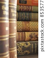 西方书籍 旧书 圣所 853577