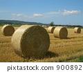 Grass roll 900892