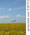Sunflower Airport 918752