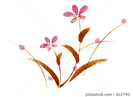 일러스트, 가을 꽃, 가을 풀 922790