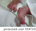 feet, paw, baby 954709