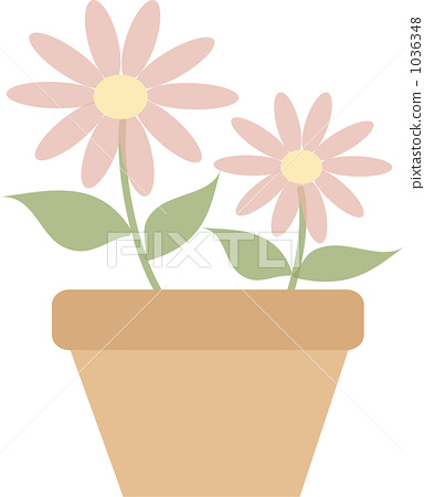 Flower 1036348