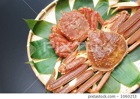 crab 1060253
