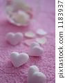心脏的配件垂直排列 1183937