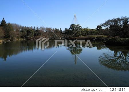 유키츠리, 유키쓰리, 소나무 1234813