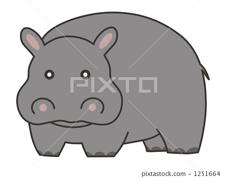 hippo, hippopotamu, animal 1251664