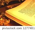 Foreign book · Peradan study · Tatsuhiko Shibusawa space ◆ Image for checking copyright shortage 1277481