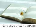 reading 1298508