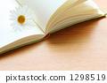 reading 1298519