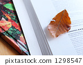 reading 1298547
