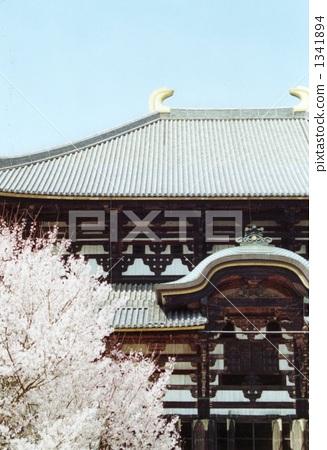 Sakura and the Great Buddha 1341894