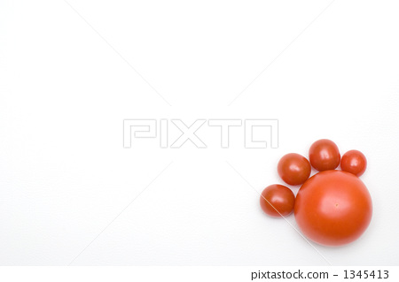 토마토의 다리 1345413