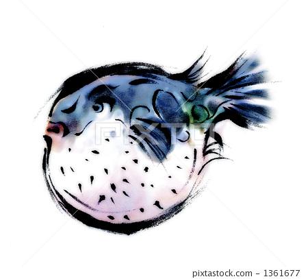 Blowfish 1361677