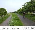 산책, 산책로, 녹색 1392167