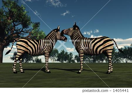 Zebra Kiss 1405441