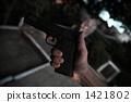 pistol 1421802