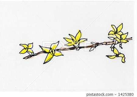 일러스트 개나리 꽃 1425380