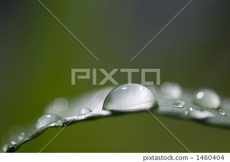 Drop Of Water, drop, water drop 1460404