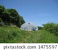 greenhouse 1475597