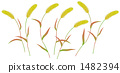 秋天有色的绿色韭菜 1482394