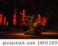 paper lantern, large tree, darkness 1490169