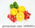 valencia, orange, takasago 1498491