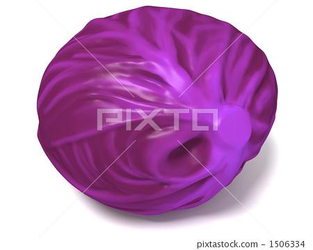 紫甘藍 1506334