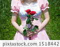 Made with roses 1518442