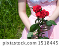 Made with roses 1518445