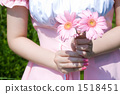 Maid with Gerbera 1518451
