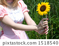 Maid with sunflower 1518540