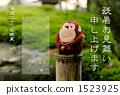 森林猴子 1523925