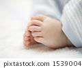 Baby's foot 1539004