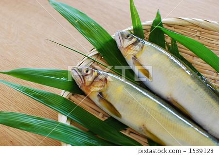 Two sweetfish 1539128