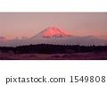 紅富士 1549808