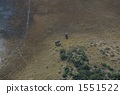 오카 방고 델타 1551522