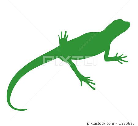 Lizard silhouette 1556623