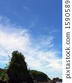Ramen gate Takanosu rock (vertical) 1590589
