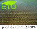 논과 잎의 문자 (BIO) 1594892