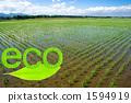 논과 잎의 문자 (eco) 1594919