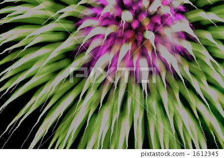 skyrocket, Fireworks Display, display of fireworks 1612345