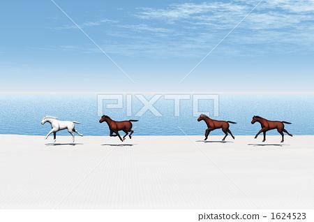 Beach horse 1624523