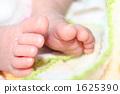 digit, finger, feet 1625390