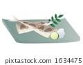 pike fish saury 1634475