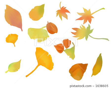 Autumn leaves hunting 1638605
