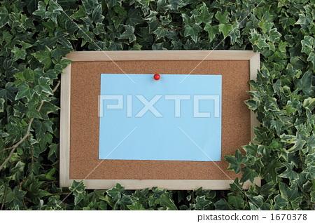 Blue paper cork board Ivy ① 1670378