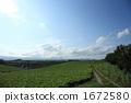 farm, field, hill 1672580