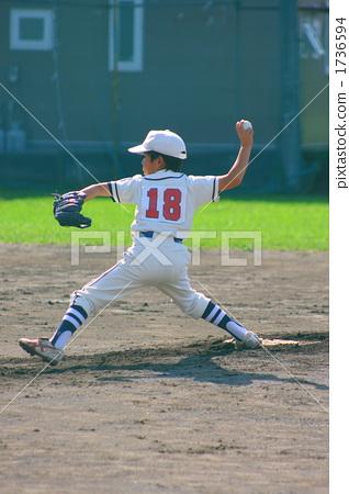 Juvenile baseball 1736594